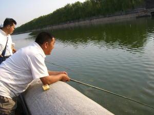 釣れても食いたくねぇ