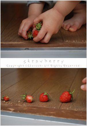 0806strawberry1
