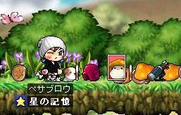 hatuka-doget-meipurukinoko.jpg