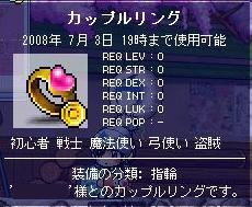 namaehikoukai-kappururinngu2008-04.jpg