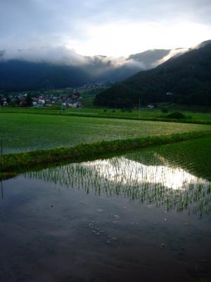 20080614朝日と田