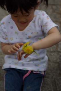 20080502菜の花you時計