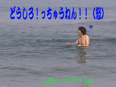 0501a12_2.jpg