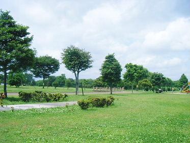2008_06010056.jpg