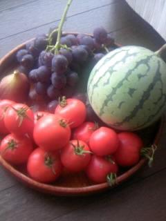 畑の収穫物8月2日