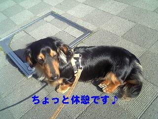 SBSH0005.jpg