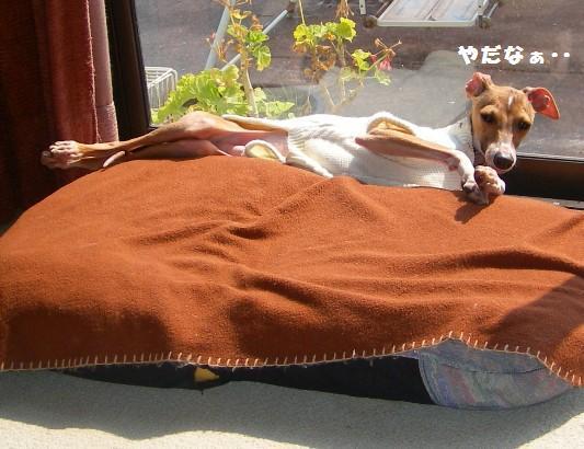 間違ったベッドの使い方