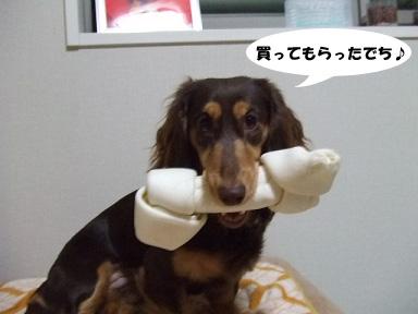 2008 03 23 チョッパー&ニコの日常 blog01のコピー