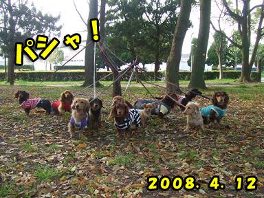2008 04 12 春のオフ会 blog06のコピー