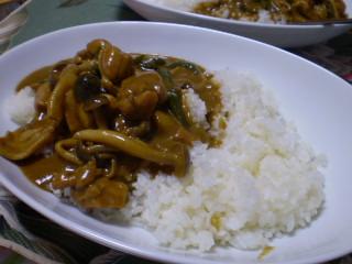 タイ風カレー0509