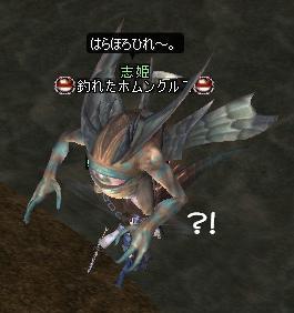 はらほろひれはれ?!
