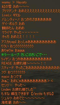 chat5.jpg