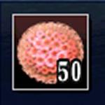 サンゴ細工50箱