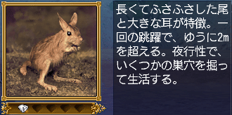 トビウサギ・説明