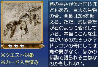 首の長いドラゴンの骨・説明