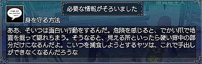 硬い守り・情報4