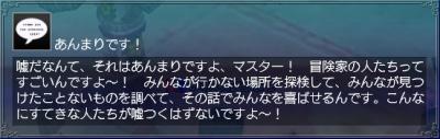 羽飾り・情報3