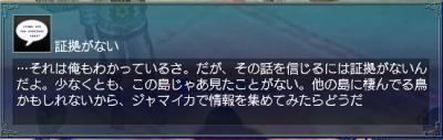 羽飾り・情報4