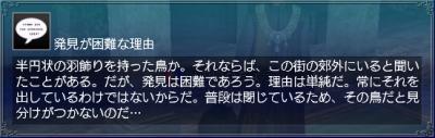 羽飾り・情報8