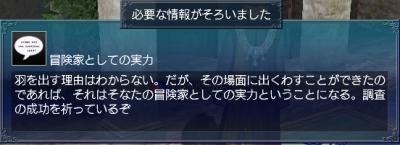 羽飾り・情報9