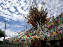 チベット仏教の旗はタルチョていうのだ、勉強になった?