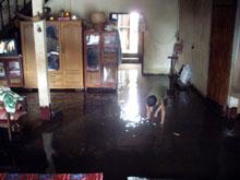 低い位置の家は水浸し、中で子供が舟で遊んでるしww