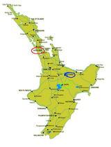 NZ地図4