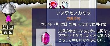 Maple0000_20080529013132.jpg