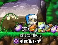 Maple0000_20080630231058.jpg