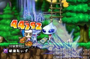 Maple0000_20080702002658.jpg