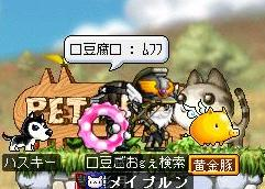 Maple0000_20080708005241.jpg