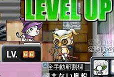 Maple0000_20080709002453.jpg