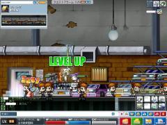 Maple0000_20080713005239.jpg