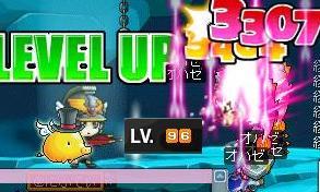 Maple0001_20080504021003.jpg