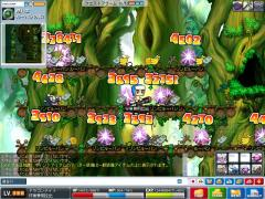 Maple0001_20080712013153.jpg
