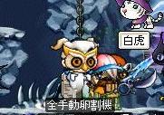 Maple0002_20080702002643.jpg