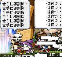 Maple0002_20080720002551.jpg