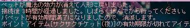 Maple0003_20080513005620.jpg