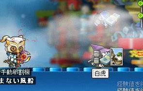 Maple0006_20080718183937.jpg