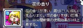 Maple0019_20080725014120.jpg