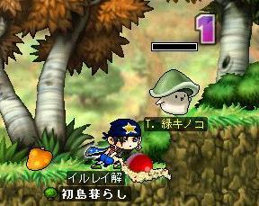 イルレイ&T,緑キノコ