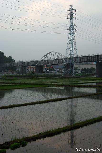 引地川水道橋と田園風景(2008/6/8)