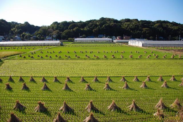 西俣野の田園風景(2007/10/28)