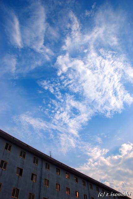 夕暮れ間近(2008/7/13)