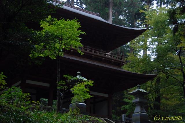 大雄山最乗寺(2008/11/11)