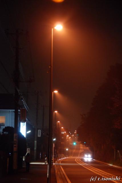 霧(2008/4/27)