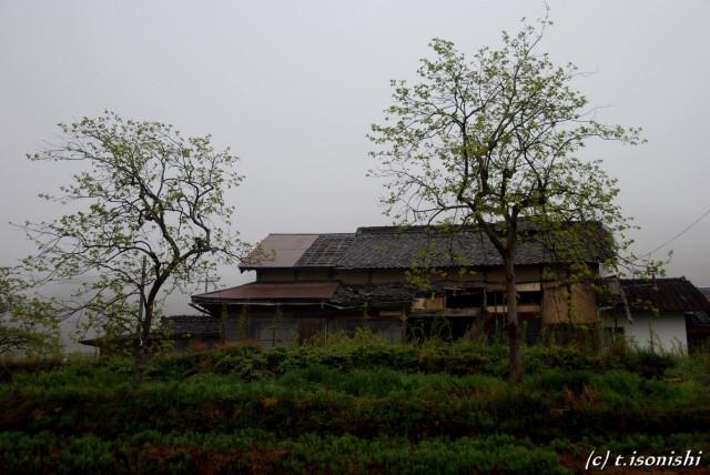 無人の家(2008/5/2)