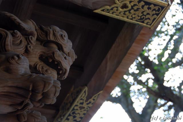 円覚寺唐門(2008/2/11)