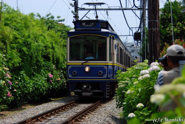 御霊神社と江ノ電(2008/6/7)