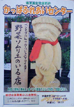 野菜ソムリエポスター